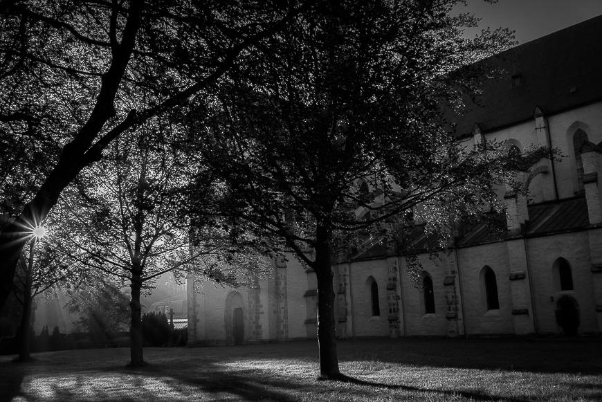 Abtei Marienstatt Studie 2