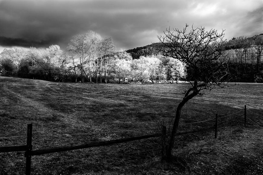Landschaftsstudie 10