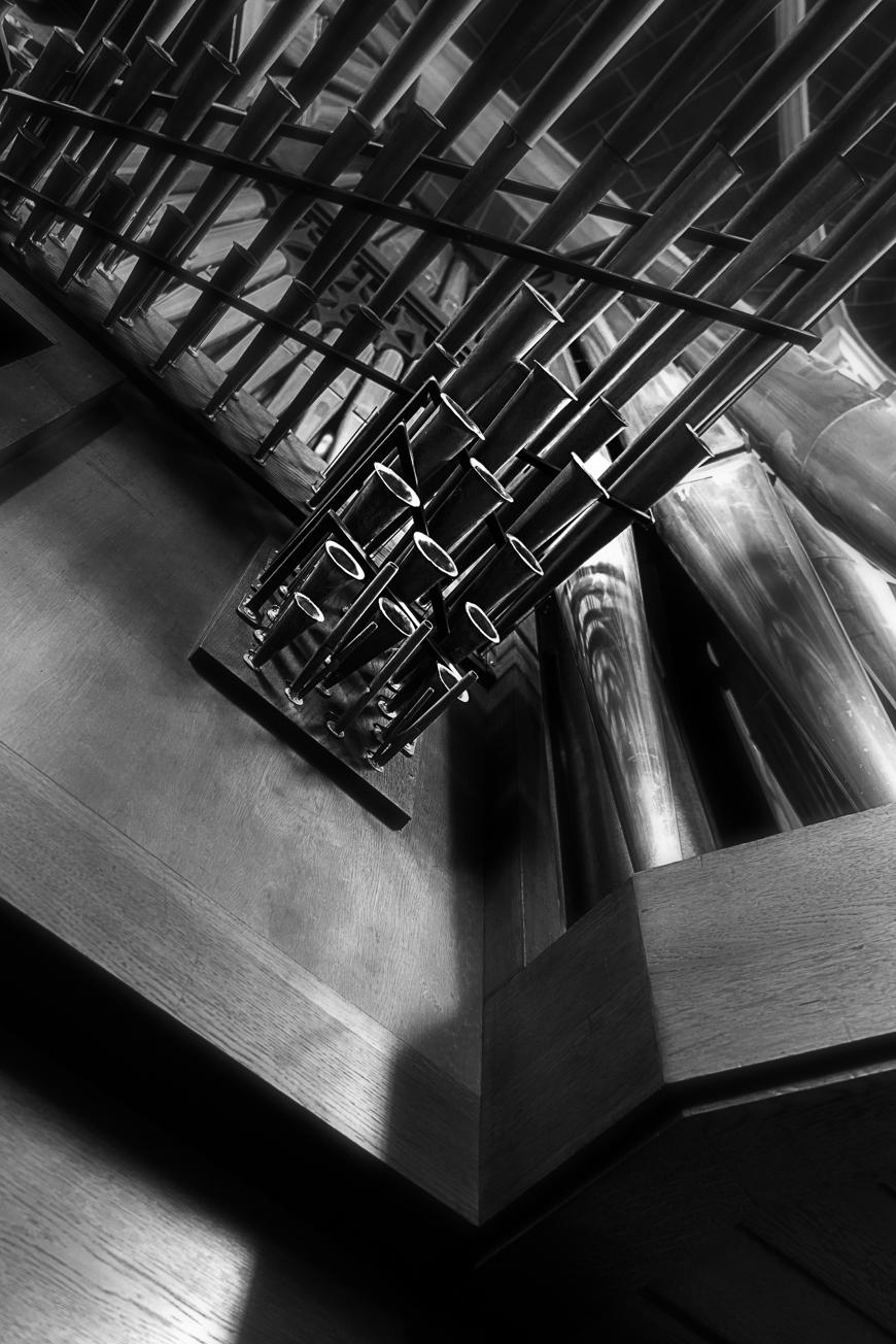 Große Rieger Orgel Marienstatt Studien (11 von 20)