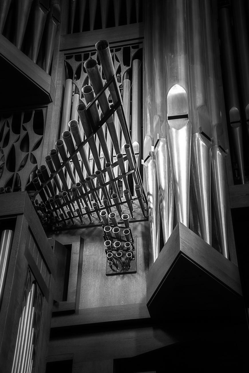 Große Rieger Orgel Marienstatt Studien (2 von 20)