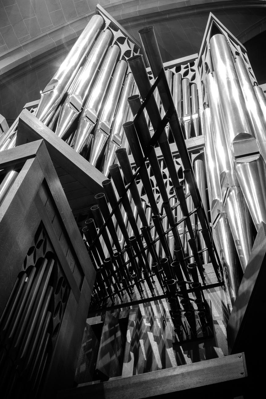 Große Rieger Orgel Marienstatt Studien (20 von 20)