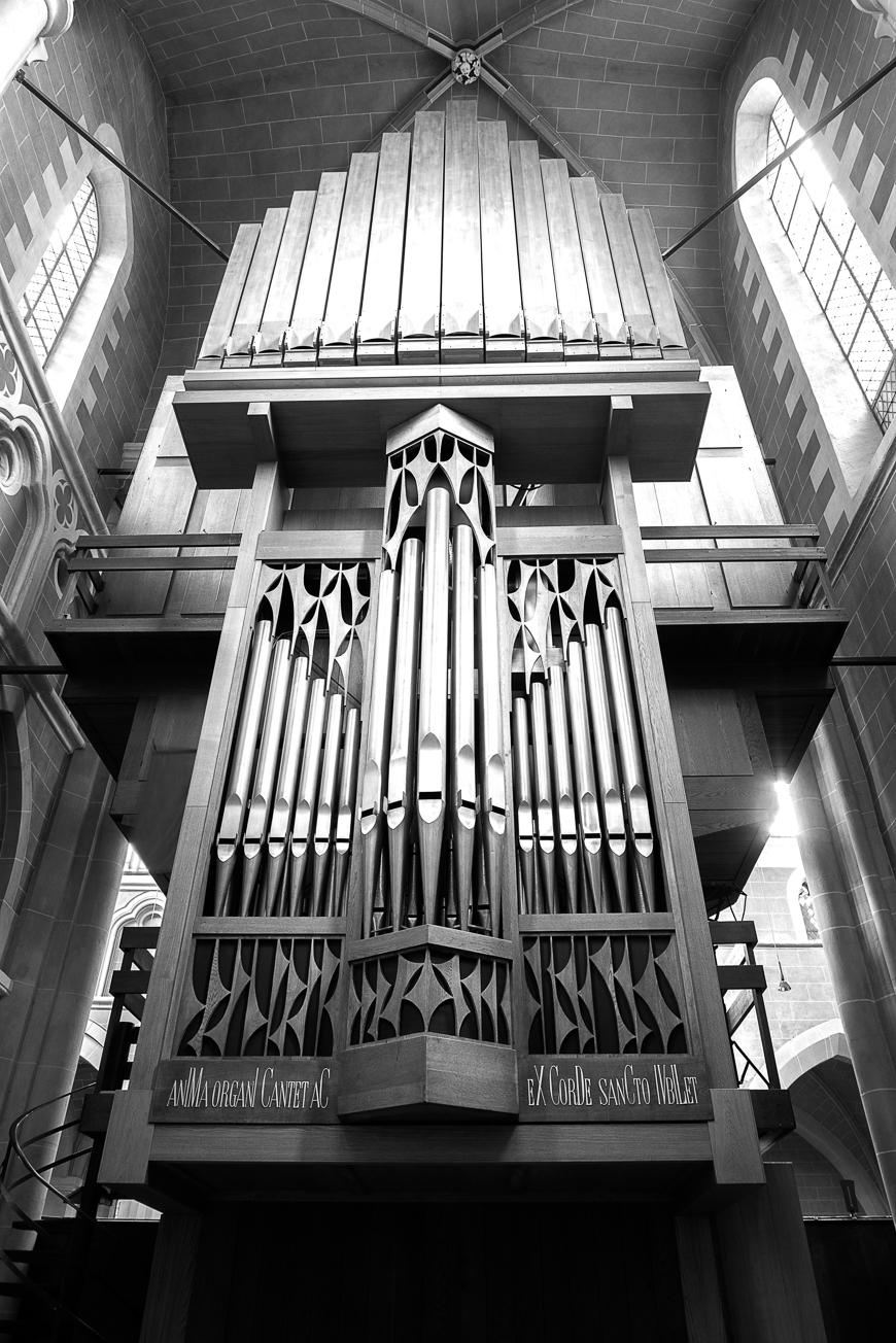 Große Rieger Orgel Marienstatt Studien (5 von 20)