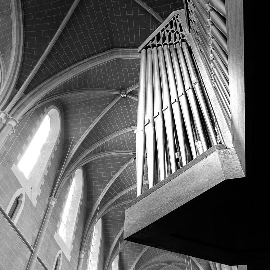 Große Rieger Orgel Marienstatt Studien (6 von 20)