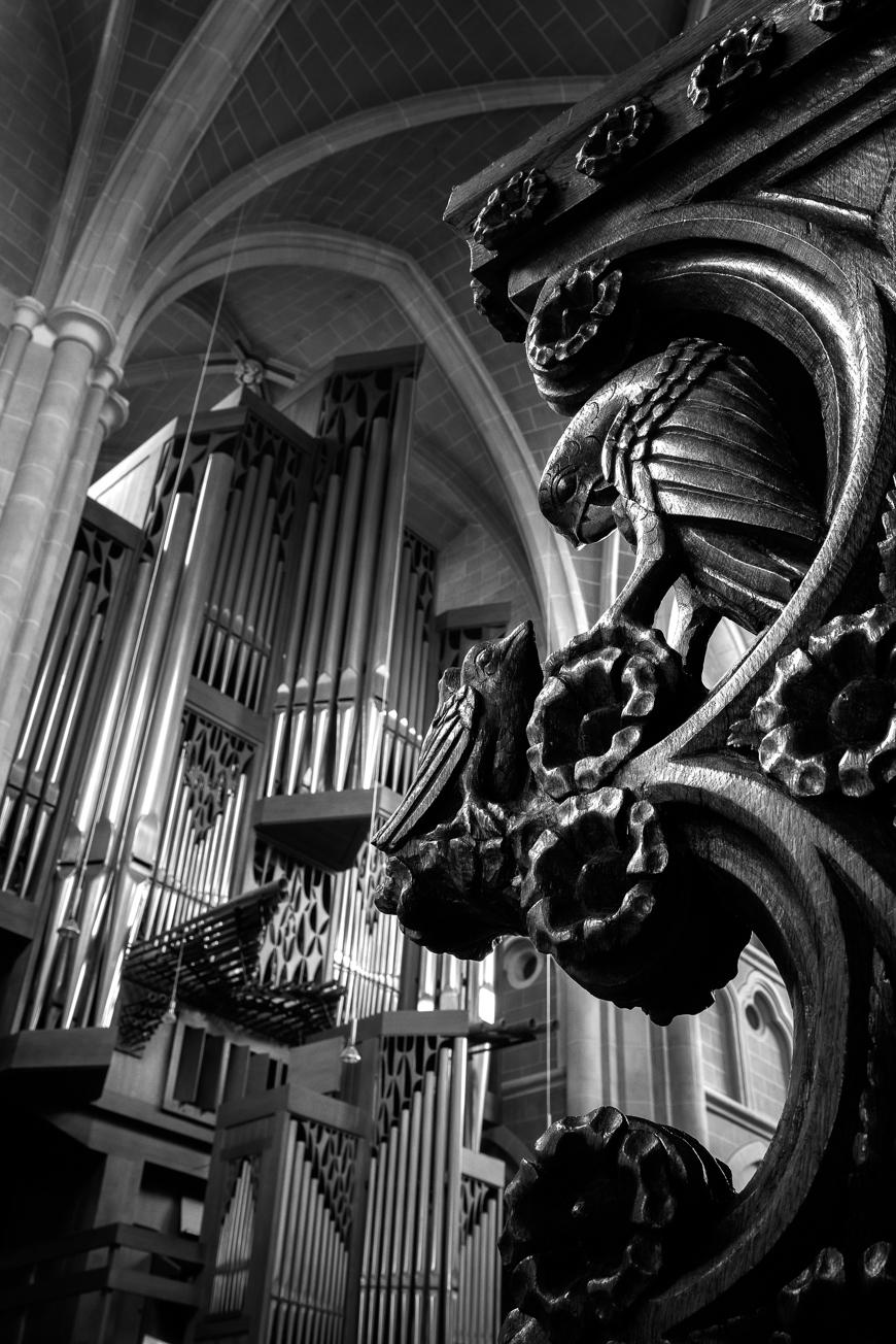 Große Rieger Orgel Marienstatt Studien (8 von 20)
